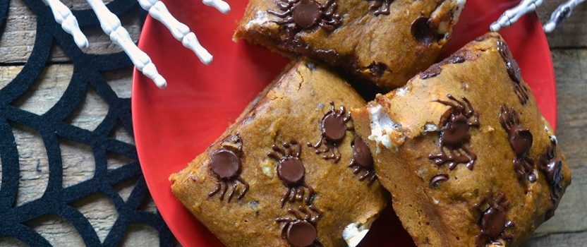 Vegan Pumpkin Chocolate Chip Blondies