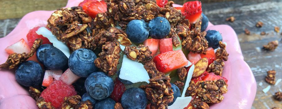 Vegan Cacao Super Food Granola (Oil-Free)
